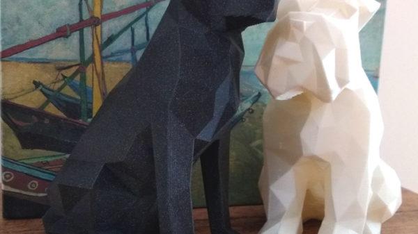 Miniaturas de Labrador e Shinauzer
