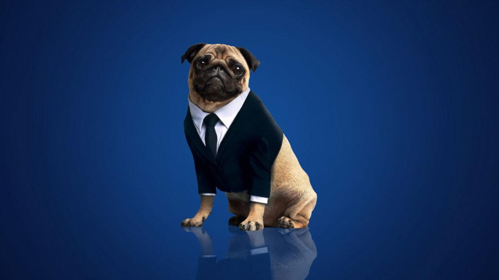 Frank era o chefe dos MIB. Um grande cachorro em Hollywood