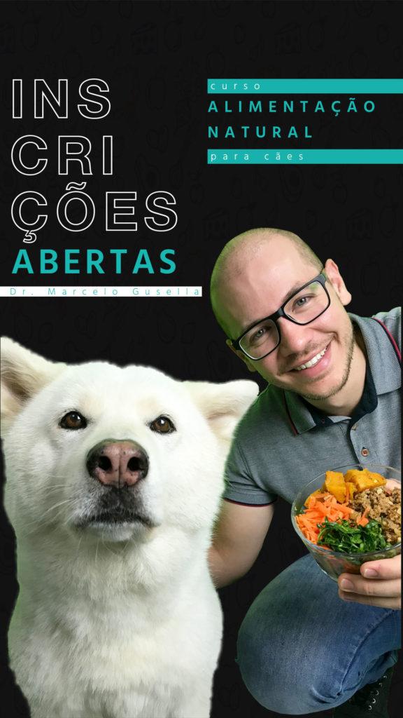 O veterinário Marcelo é o idealizador do Curso de Alimentação Natural para Cães