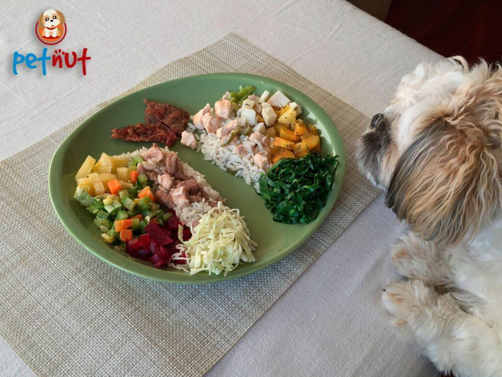 Alimentação Natural é uma opção saudável para pets