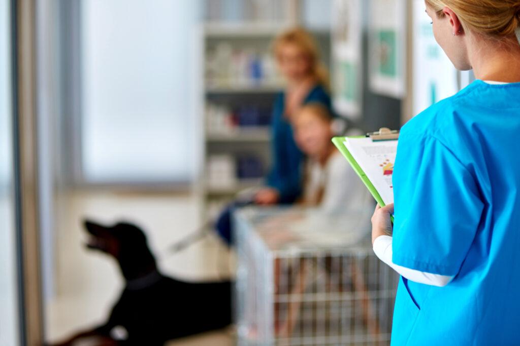Nem um veterinário mais é um programa de saúde mental para profissionais